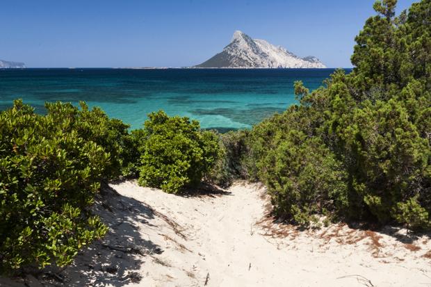 Vue sur Isola Molara