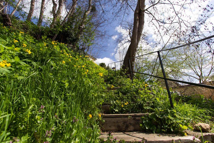L'escalier de la Sansonne à Auvers-sur-Oise