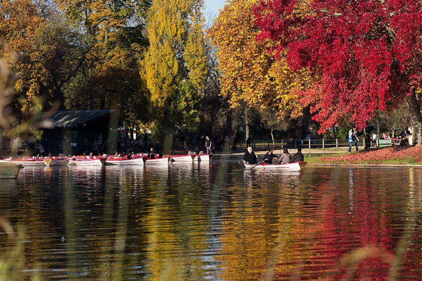 couleur-automne (14)