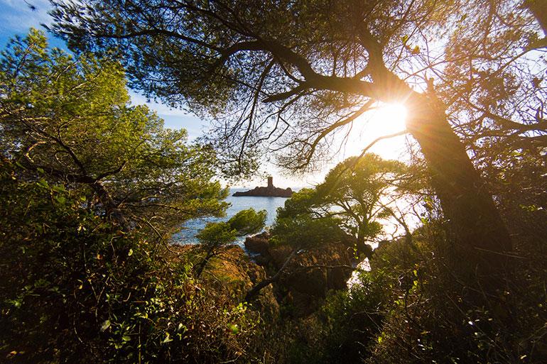 Cap Dramont et l'île d'or