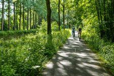 Une balade à vélo le long du canal de l'Ourcq