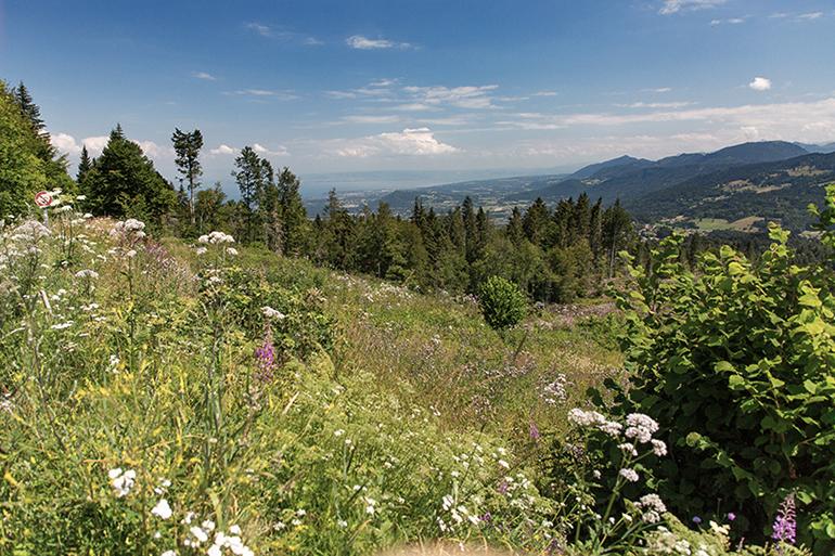 Les Monts de Genève